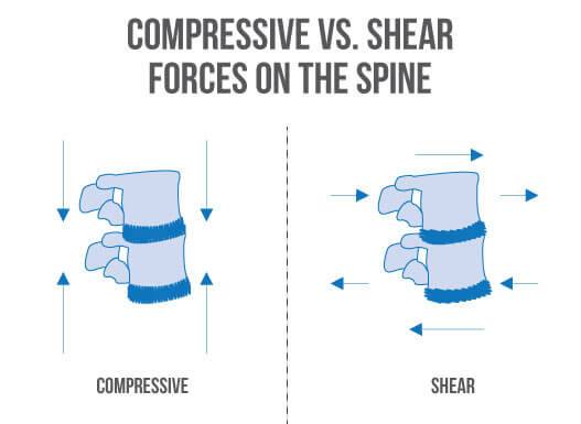 Compressive forces in the squat and deadlift