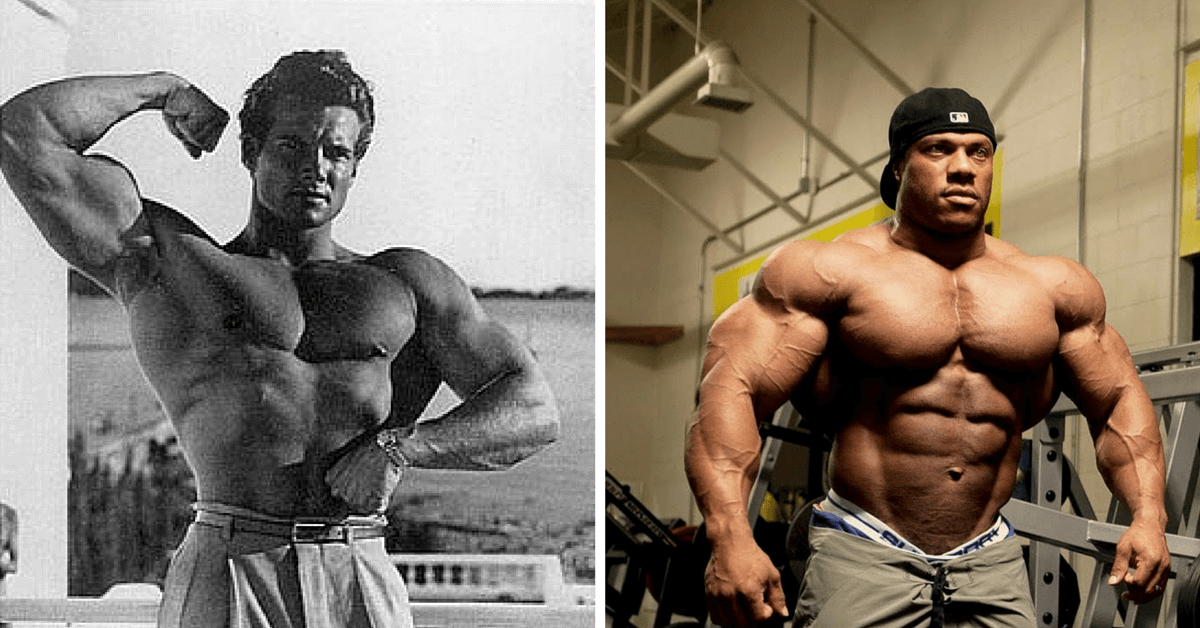 How Much More muscle can you build on steroids?