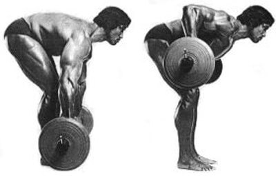 Arnold did barbell rows. Arnold had big pecs. Correlation=causation, right?